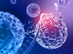 Papel da medicina diagnóstica na prevenção de novas pandemias